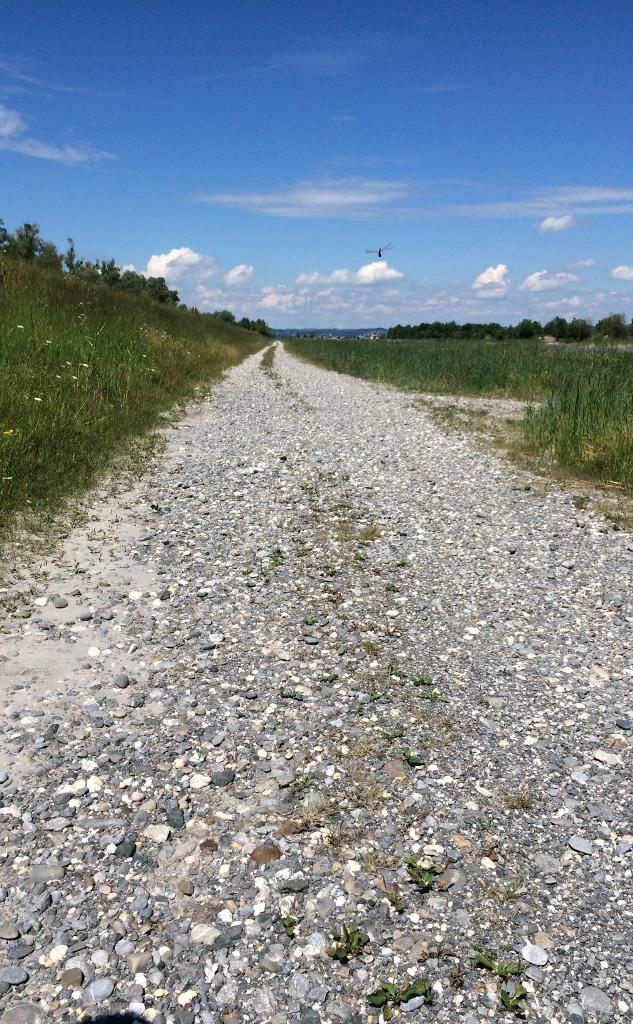 Grobkiesiger Weg auf dem Damm, links Wiese, rechts Wiese, vorne Himmel, schnurgerader Weg