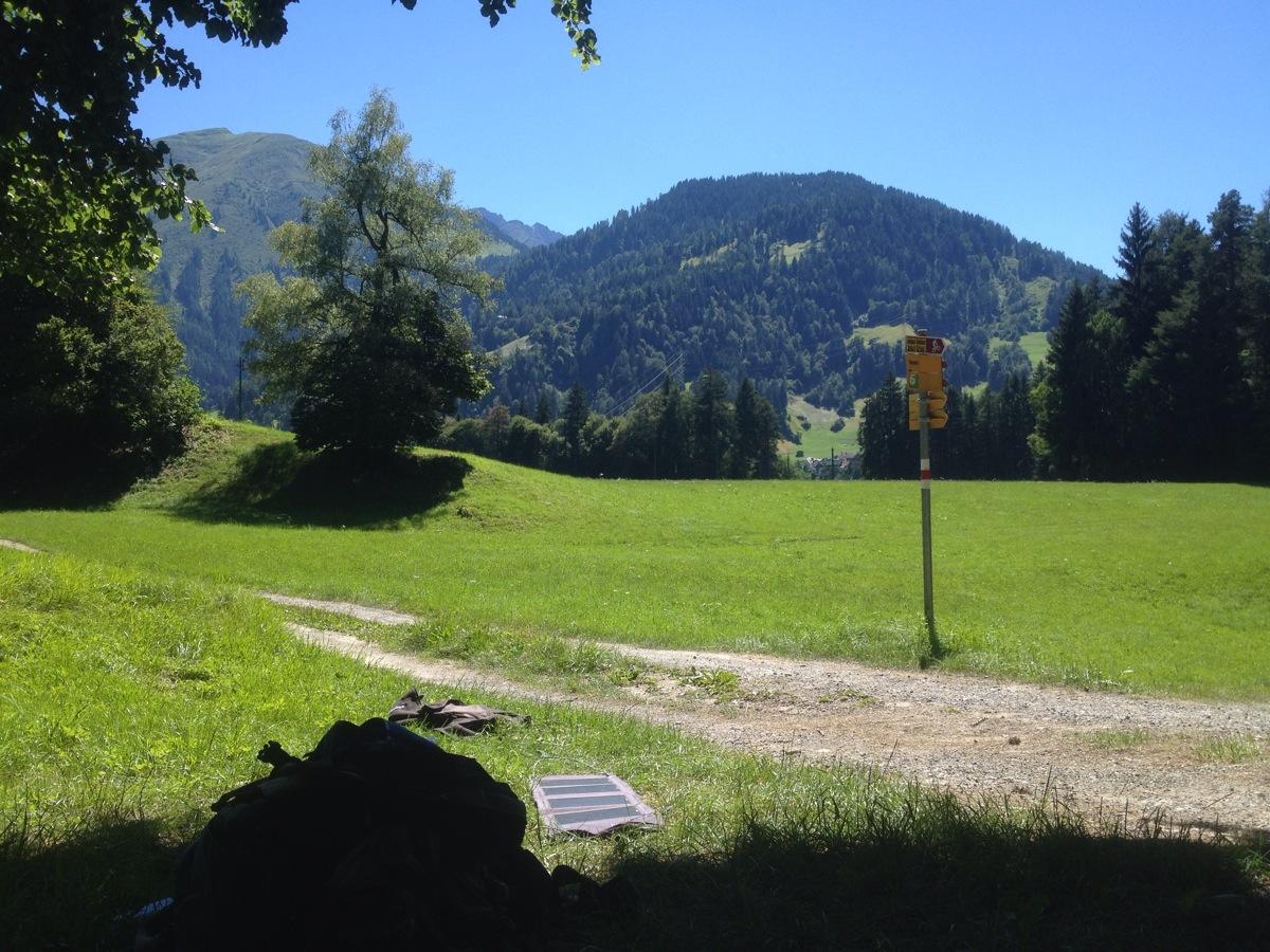 Blick auf Bergwiese nahe Versam. Wanderwegschild.  Gesehen aus dem Schatten einer Buche oder Linde
