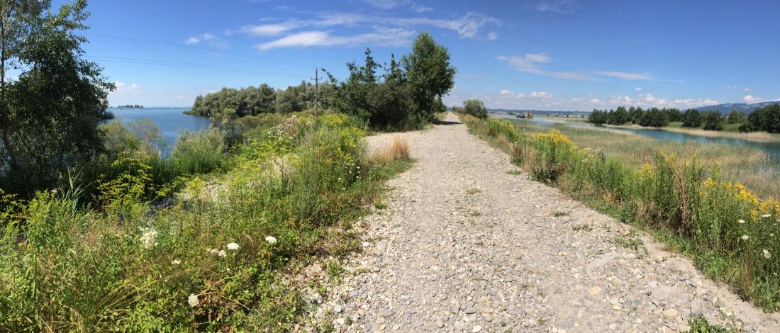 Rechts Rhein, links See, dazwischen der Dammweg